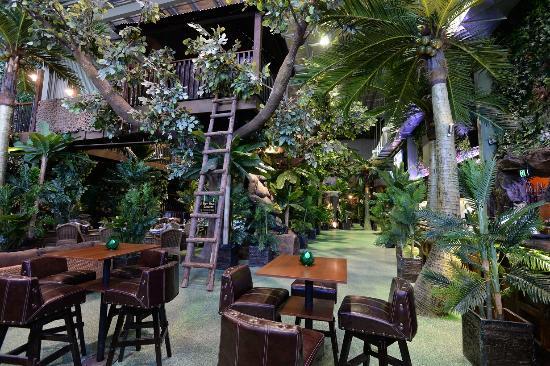 Jungle Restaurant Kent Town  Restaurant Reviews Phone