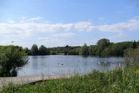 Cosmeston Lakes Country Park