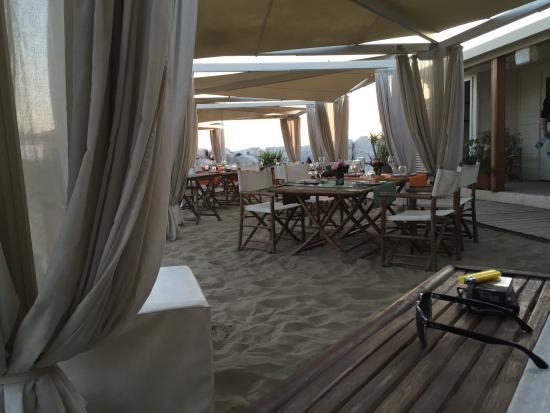 Locale  Picture of Bagno Italia Restaurant Marina di Pisa  TripAdvisor