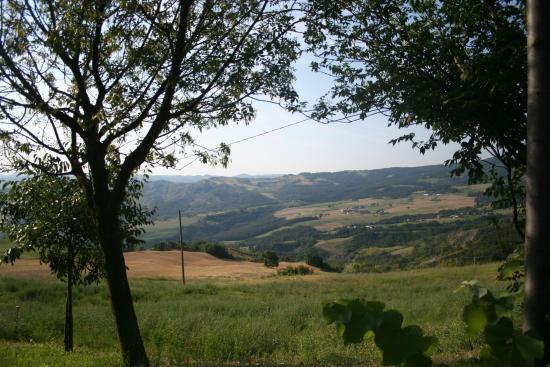 Agriturismo la Persiana Zocca  Ristorante Recensioni Numero di Telefono  Foto  TripAdvisor