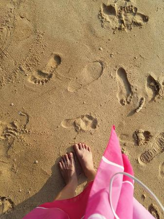 Tioman Paya Resort Pulau Tioman Malaysia UPDATED 2016 Reviews and 70 Photos  TripAdvisor