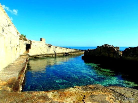 splendida  Picture of Piscina Naturale di Marina Serra Tricase  TripAdvisor