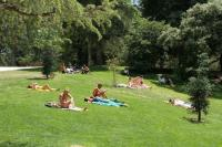 Sunbathing in Retiro - Picture of Retiro Park (Parque del ...