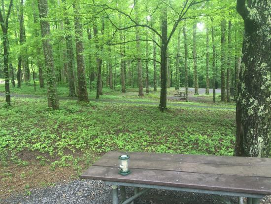 Your cosby campground stock images are ready. Cosby Campground Picture Of Cosby Campground Tripadvisor