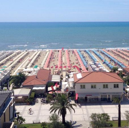 Insalata Di Polpo  Picture Of Bagno Venezia, Lido Di