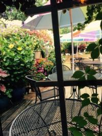 Choc cake, cheese dip, patio - Picture of El Patio Mexican ...