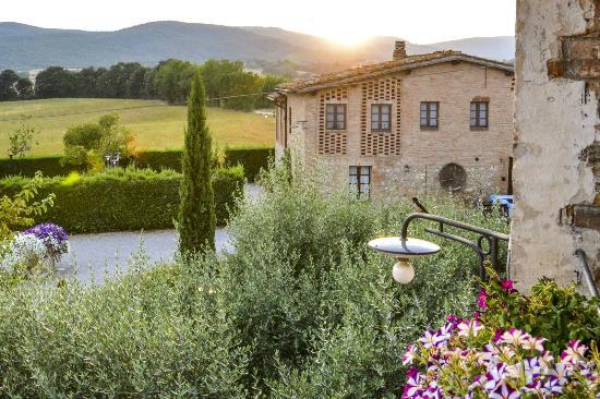 Casa Di Campagna in Toscana Prices Inn Reviews Italy