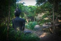 a quiet corner of osho teerth meditation park - Picture of ...