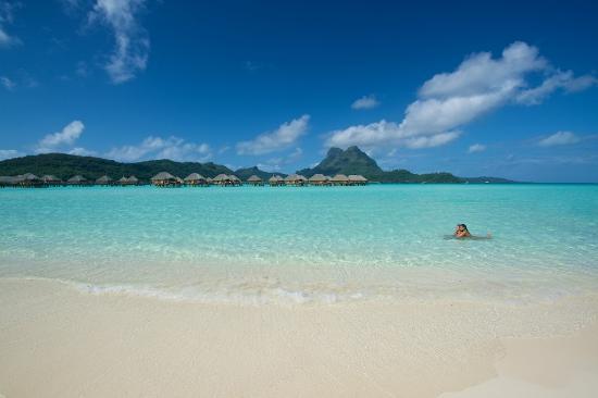 Bora Bora Pearl Beach Resort  Spa Polinesia francese Prezzi 2017 e recensioni