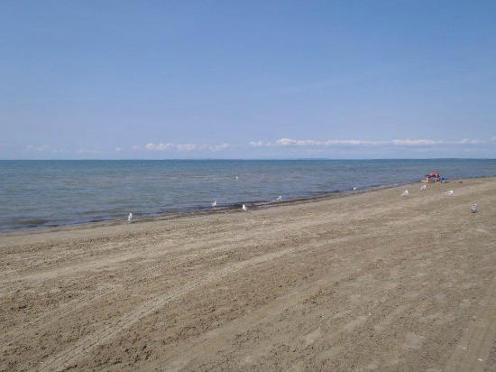 Beach Area 6  Picture Of Wasaga Beach Provincial Park