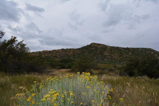 Morefield Village Campground Mesa Verde National Park CO