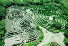 迷宮主題公園照片