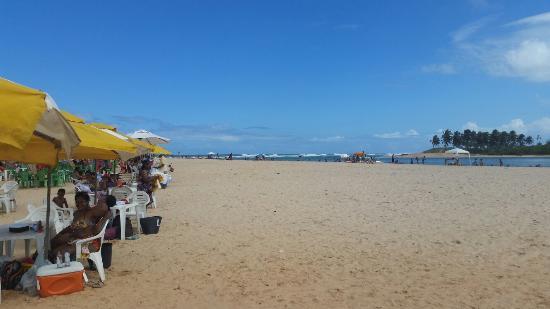 Resultado de imagem para Praia do Porto de Sauipe