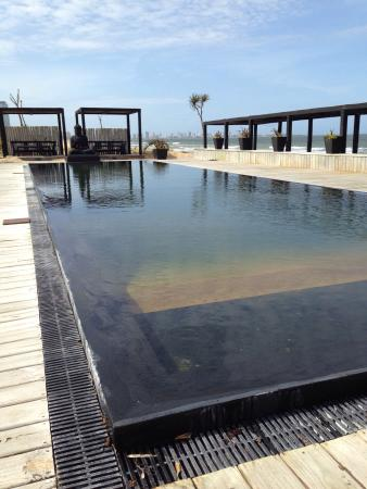 Piscina  Foto de Serena Hotel Punta del Este Punta del