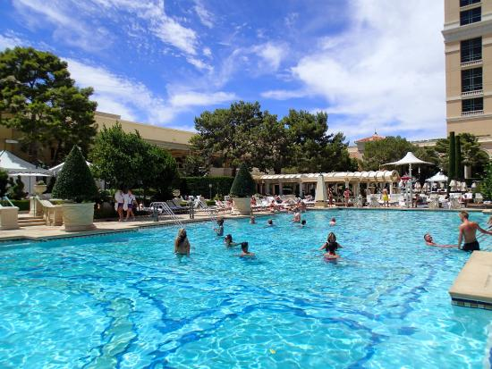 Area de piscina fotografa de Bellagio Las Vegas Las Vegas  TripAdvisor