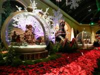 Christmas Gardens at the Bellagio