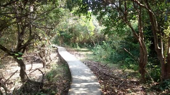 荔枝窩自然步道 (香港) - 旅遊景點評論 - TripAdvisor