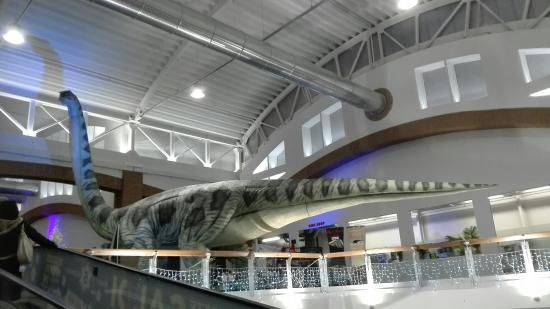 I dinosauri dentro il centro commerciale  Picture of