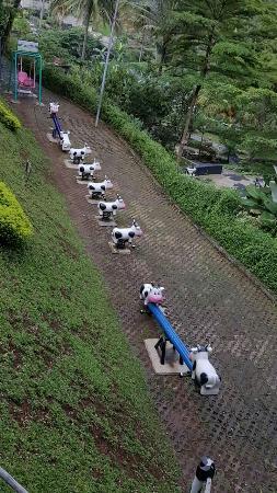 Wisata Cimory Semarang : wisata, cimory, semarang, Tempat, Belanja, Aneka, Produk, Olahan, Susu,, Sekaligus, Wisata, Keluarga, Picture, Cimory, Valley,, Semarang, Tripadvisor