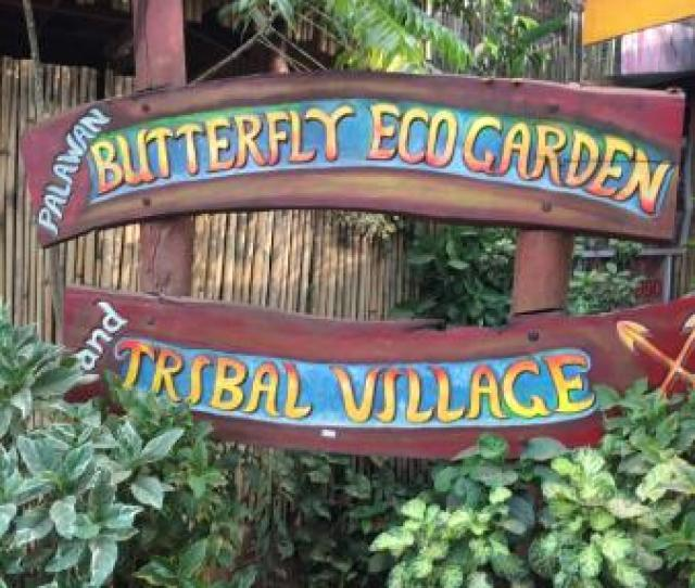 Palawan Butterfly Ecological Garden And Tribal Village We Had A Wonderful Time Friendly