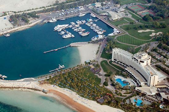 Ali View Palm Aerial Jebel