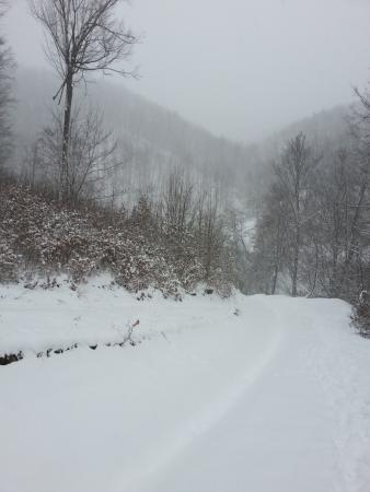 Vrancea County Photos  Featured Images of Vrancea County Southeast Romania  TripAdvisor