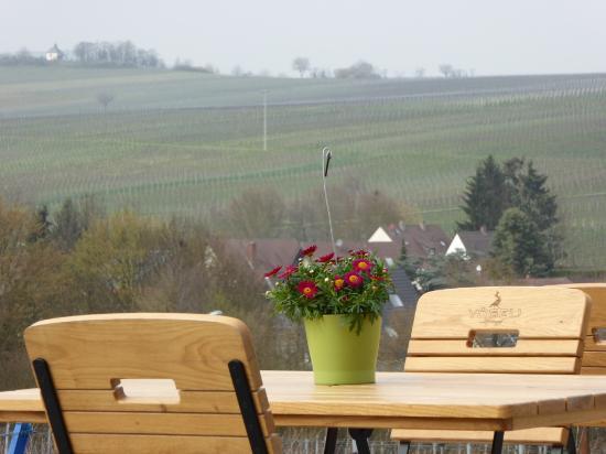 Blick Von Der Terrasse Zur Kleine Kalmit Photo De Weingut Vogeli