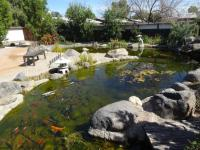 Accent Area in Gardens - Picture of Yume Japanese Gardens ...