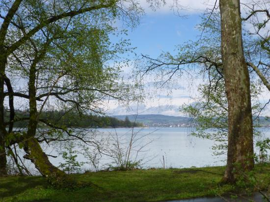 Inselplan  Bild von Insel Mainau Konstanz  TripAdvisor