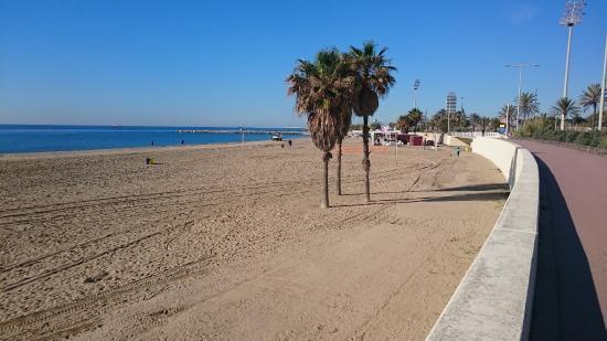 Playa de la Mar Bella (Barcelona) - 2020 Qué saber antes de ir ...