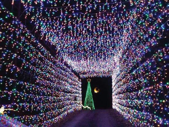 Drive Thru Christmas Lights Texas