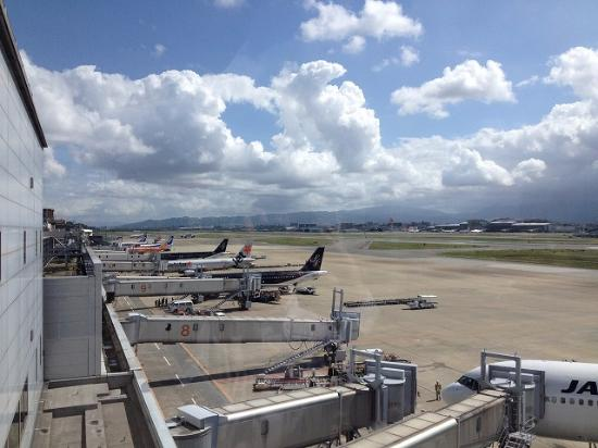 The 10 Closest Hotels To Fukuoka Airport Domestic Terminal