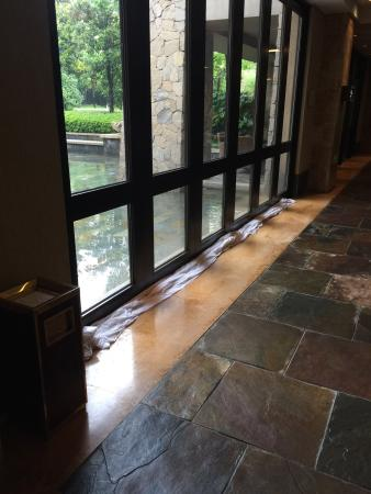 Prevent Rain Water From Seeping Into The Lobby Picture Of