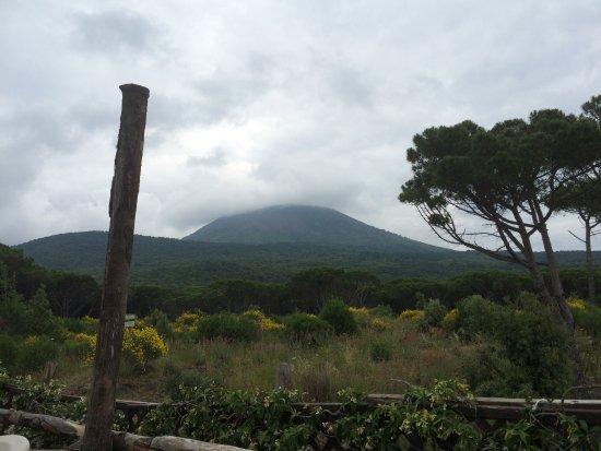 Landscape to Vesuvius  Foto di Terrazza Due Golfi Ercolano  TripAdvisor