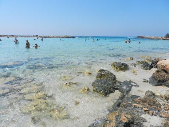 spiaggia  Foto di Nissi Beach Ayia Napa  TripAdvisor