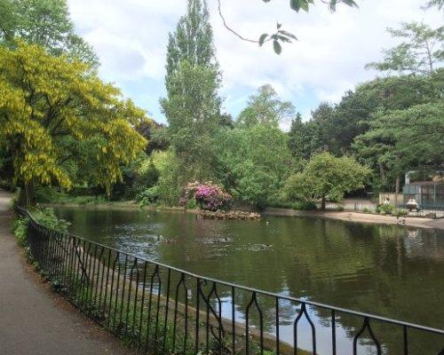 The Arboretum pond - Picture of The Arboretum, Nottingham - Tripadvisor