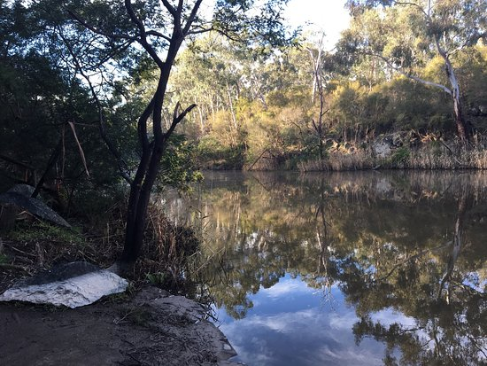 Jumping Creek Reserve Warrandyte Updated 2019 All You