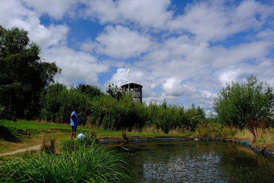 Pond Farm Kennels Review