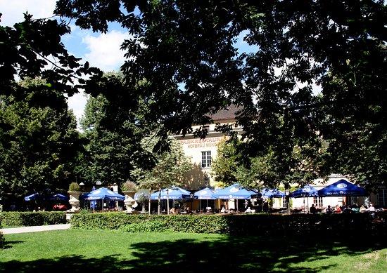 Biergarten Im Park Bild Von Alter Botanischer Garten München
