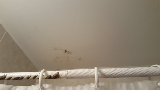 ceiling and rust on shower curtain rod