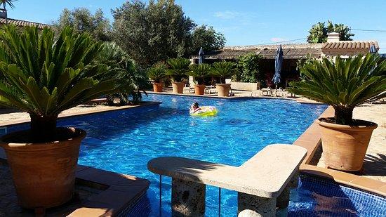 Garten Und Pool Photo De Finca Ca'n Bessol Felanitx TripAdvisor