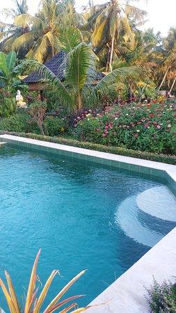 Buddha Home Stay Pool Im Garten