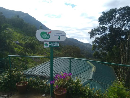 Eagle Mountain Resort Picture Of Eagle Mountain Munnar