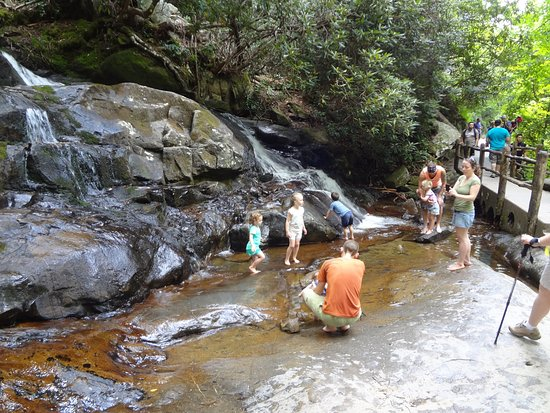 You'll hike the laurel falls trail · 2.6 miles round trip hike · allow around 2 hours · gatlinburg to laurel falls trailhead is around a 20 minute drive · official. Top Of Laurel Falls And Little Pools Picture Of Laurel Falls Great Smoky Mountains National Park Tripadvisor