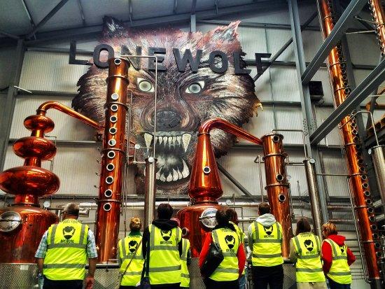 Lone Wolf Distillery - Picture of BrewDog DogTap & DogWalk Brewery Tour,  Ellon - Tripadvisor