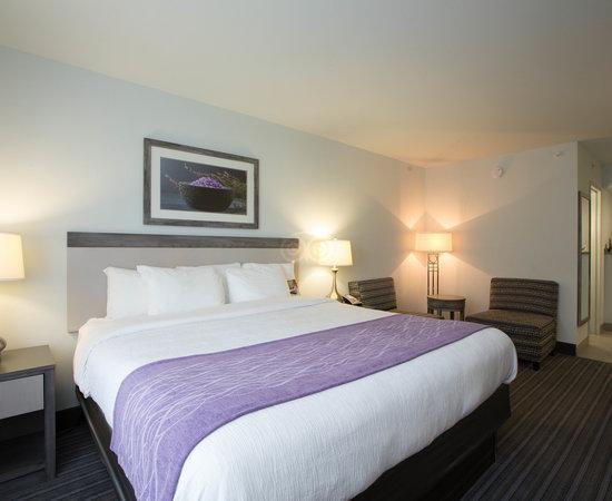 Comfort Inn Williamsburg Gateway Updated 2020 Prices