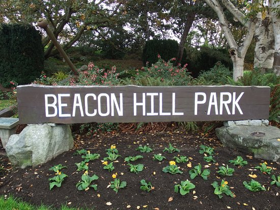 Beacon Hill Park Victoria Bc November
