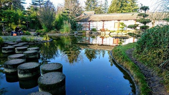 Jardin Ile de Versailles