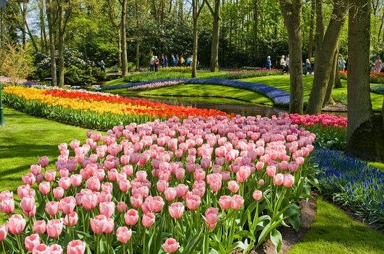 THE 15 BEST Things to Do in Amsterdam  2018 with Photos  TripAdvisor