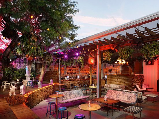 El Patio Wynwood Miami  All You Need to Know Before You